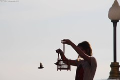 Woman releasing birds on Pratumnak Hill in Pattaya, Thailand (KENO Photography) Tags: caged cage concept couple freedom nature released background birds bird break captivity chain courage cute empty enclosure escape feather fly woman