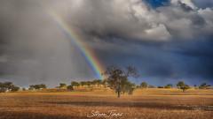 Autumn Storm 3 (Struan Timms Photography) Tags: struantimmsphotography storm landscape nikon nikhdreffex nsw nikcollection nikond750 thunderstorm juneephotographer junee juneeshire marrer rainbow rain clouds sky tokina287028atxproii angeniuex