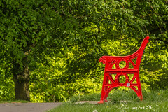 Green For Go ....or... Red For Stop ....I Chose The Red Option To Rest And Take In The Greens (williamrandle) Tags: red bench dof depthoffield park green trees plants seat spring 2018 wollescote uk england nikon d7100 tamron70200g2 outdoor