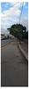 Panoramic... (Guilherme Alex) Tags: panoramic city sidewalk street tree sky blue morning clouds art amateur samsung galaxy j2 prime cellphone pic frame life urban citylife teofilootoni minasgerais brazil world concrete wood digital lines
