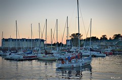 evening at C-harbour (Kennuth) Tags: water sailing boats charlottetown