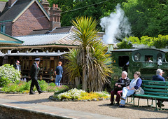 Exotic and Quixotic? (davids pix) Tags: exotic tree yucca horsted keynes station 813 port talbot victorian preserved steam locomotive bluebell railway 2018 18052018