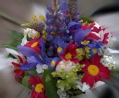 Floral Bouquet (Scott 97006) Tags: flowers bouquet petals colors beauty fragrant lovely