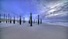 Afraid of the water. (Alex-de-Haas) Tags: 11mm adobe d850 dutch hdr holland irix lightroom nederland nederlands netherlands nikon noordholland noordzee northsea petten pettenaanzee photomatix photomatixpro beach beachscape exposure hemel landscape landschap longexposure lucht palen pillars poles sand sea skies sky steunpijler steunpijlers steunpilaar steunpilaren strand sundown sunset supportpillars wind winter zand zee zonsondergang