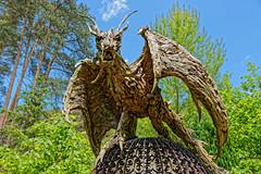 Dragon (Geoff Henson) Tags: dragon sculpture wood driftwood park trees sky blue green brown monster