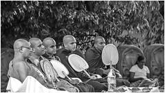 """OM MANI PADME HUM"" (Hail to the jewel in the lotus.) (Ramalakshmi Rajan) Tags: srilanka blackandwhite blackwhite people monk placesofworship kelaniyatemple nikon nikond5000 nikkor18140mm travel"