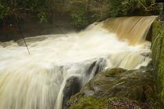 British Waterfalls: Aberdulais Falls (CoasterMadMatt) Tags: gwaithtunarhaeadraberdulais2018 aberdulaistinworksandwaterfall2018 gwaithtunarhaeadraberdulais aberdulaistinworksandwaterfall aberdulaisfalls2018 aberdulaisfalls aberdulais falls gwaith tun rhaeadraberdulais2018 aberdulaiswaterfall2018 rhaeadraberdulais aberdulaiswaterfall rhaeadr waterfall waterfalls fall waterfallsofwales welshwaterfalls waterfallcountry afondulais afon dulais riverdulais river rivers thenationaltrust nationaltrust national trust neathattractions bwrdeistrefsirolcastellneddporttalbot bwrdeistref sirol castellnedd port talbot decymru southwales de cymru south wales europe landscape naturallandscape landscapes britain greatbritain gb unitedkingdom uk march2018 winter2018 march winter 2018 coastermadmattphotography coastermadmatt photos photography photographs nikond3200