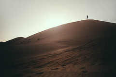 Wahiba Sands (Paulina Wierzgacz) Tags: oman wahibasands desert nowhere dunes sand endless space dromader camel adventure travel traveller tourist travelling trip asia persiangulf arabianpenisula middleeast walk wanderlust wild wind way people nature fun friends portrait
