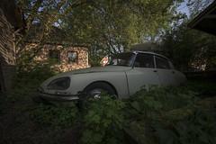 _DSC8297 (Foto-Runner) Tags: urbex lost decay voitures épaves abandonnés ds