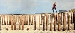 """Les folies de Sophie"", Dunes, mer du Nord et plage, Dombourg, Walcheren, Zeelande, Nederland (claude lina) Tags: claudelina nederland paysbas hollande zeeland zélande dombourg plage beach mer sea merdunord noordzee dunes poteaux"