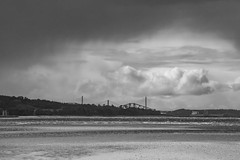 Lauriston and Crammond with Alastair April 2018 (104 of 126) (Philip Gillespie) Tags: crammond lauriston castle keep gardens park green blue red yellow orange colour color mono monochrome black white sea seascape landscape sky clouds drama dramatic walkway path flowers leaves trees april spring defences canon 5dsr people rust metal grafitti man dog petals bluebells dafodils holly blossom pond forth water wet rain sun reflections architecture mirrors gold japan garden sunlight scotland