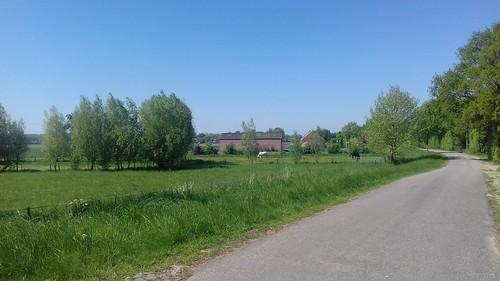 Plataanweg