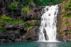 Waimea Falls (michaelheiner) Tags: nature nikon silky hawaiian hawaii honolulu oahu tree waimea falls waterfall rocks pool water smooth landscape rock forest jungle