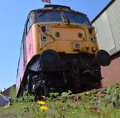 Locomotive 47761 at Swanwick, Midland Railway Centre. 07 05 2018 (pnb511) Tags: midlandrailwaycentre derbyshire trains railway diesel engine loco locos locomotives train rail shed weeds brambles dandelions