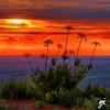 Sunset at Steptoe Butte (Keylight1) Tags: fujifilm keylight mjk palouse wa xt20 spring steptoe butte