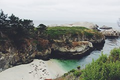 (andthensom) Tags: pointlobos green cove california carmel monterey