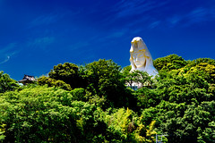 Ofuna Kannon in Blue Sky, Kamakura : 大船観音 (Dakiny) Tags: 2018 spring earlysummer may japan kanagawa kamakura ofuna outdoor freshgreen city street landscape temple ofunakannon kannon art architecture building great statue sky blue nikon d750 nikonafsmicronikkor60mmf28ged afsmicronikkor60mmf28ged nikonclubit