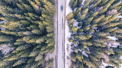 (partsavatar) Tags: aerial asphalt birdseyeview car cardriving carroad countryside daylight drivingcar droneshoot fastcar forest greentrees journey nature pinetrees road rural scenery season speed street topview traffic transportation travel trees woods