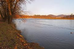 The River San, Sanok, Poland 31/01/2018 (Gary S. Crutchley) Tags: sanok southern south poland polski history heritage east eastern europe travel olympus epl1 river san
