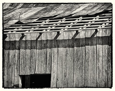8937 (Betty Cowart) Tags: harlinsdalefarm abandoned farm deserted neglected franklin tennessee barn wood weathered worn blackandwhite monochrome country