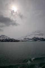 MS Westerdam - 7 Day Alaska May 2018 - Glacier Bay-254.jpg (Cindy Andrie) Tags: alaska hollandamerica d800 nature britishcolumbia beach victoriabc westerdam glacierbay landscape nikon cindyandrie canada andrie glaciers nikond800 cindy