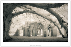 Abbey Arches (mistymornings99) Tags: concept photostyles infrared margamcountrypark ir abbey nature