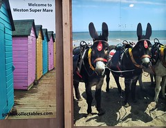 2018 0428 638 (SGS8+) Weston-super-Mare (Lucy Melford) Tags: samsunggalaxys8 westonsupermare beach huts donkeys
