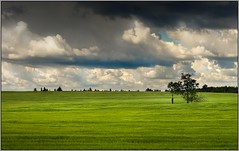 The memory of the warrior of God (piontrhouseselski) Tags: cz south moravia clouds green