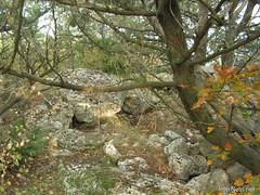 Крим, Таврські могильники на горі Кішка InterNetri Ukraine 2009 137
