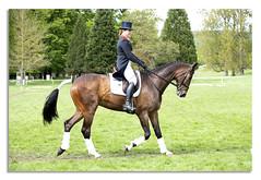 Horse trails 2018 (johnhjic) Tags: johnhjic nikon d850 nikond850 chatsworth chatsworthhouse darbyshire 2018 horse house horsetrials derbyshire uk england horses jumps jump fance eventing event threeday 3day 3 day action sport motion