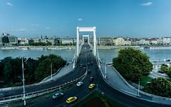 Elisabeth Bridge (mucahits) Tags: bridge budapest buda traffic cars pass river green blue road europe travel