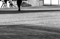 (Davide Zappettini) Tags: davidezappettiniphotography filmphotography street streetlife people pellicola ilford fidenza city shadows