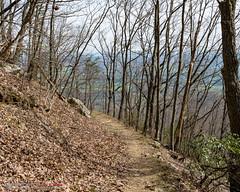 Chadwell Gap Trail (mikerhicks) Tags: chadwellgaptrail cubage cumberlandgapnationalhistoricalpark ewing hdr hiking nationalpark nature sonya6500 usa unitedstates virginia history outdoors camera:make=sony exif:lens=epz18105mmf4goss geo:lat=36666213333333 exif:make=sony camera:model=ilce6500 exif:aperture=ƒ67 exif:focallength=18mm geo:country=unitedstates geo:lon=83509563333333 exif:isospeed=200 geo:city=ewing geo:location=cubage geo:state=virginia exif:model=ilce6500