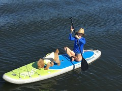 Roxie's Lucy Loves Paddleboarding!