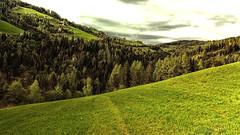 lush grass (camerito) Tags: grass dale tal mountains berge bäume trees forest wald sky clouds himmel wolken nature camerito nikon1 j4 flickr unlimitedphotos landscape landschaft