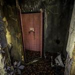 Wasteland/5 thumbnail