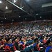 Graduation-439