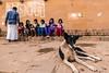 Children with Dog-DSC_8400 (thomschphotography3) Tags: varanasi benares india asia dog children feeding breakfast ghats streetphotography