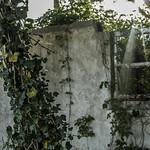 Wasteland/10 thumbnail