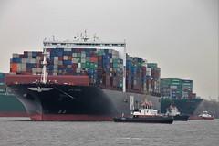 Hamburg: Navigare necesse est (Christopher DunstanBurgh) Tags: hamburg hafen harbour port schiff ship elbe