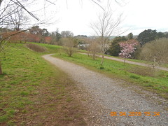 DSCN5853 (E1773) Tags: follaton arboretum totnes sunday 8th april 2018 lukes 40th birthday