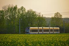 Bombardier NGT12 Classic XXL #1226 LVB Leipzig Lipsk (3x105Na) Tags: bombardier ngt12 classic xxl 1226 lvb leipzig lipsk strassenbahn strasenbahn tram tramwaj deutschland niemcy germany sachsen saksonia