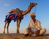 The Thar Desert Cameleer (Jaisalmer, India 2015) (Alex Stoen) Tags: 5dmk2 alexstoen alexstoenphotography canon canoneos5dmarkii ef2470mmf28lusm flickr geotagged google india samsanddunes sunset thardesert travel vacation facebook smugmug