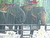 Back in time 2001 (serg sonnino 55555) Tags: mekongriver sergsonnino