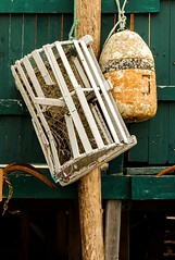 Old Fishing Gear (Karen_Chappell) Tags: quidividi newfoundland nfld buoy float fishing gear lobstertrap wood wooden paint painted canada atlanticcanada avalonpeninsula orange green buoyant