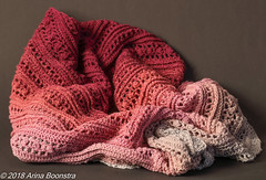 Secret Paths - ddpIMG_9226 (arina23111963) Tags: crochet stole shawl scheepjes wirl freepattern