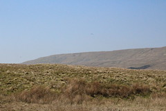 IMG_8859 (Lady Science) Tags: ribblehead ribbleheadviaduct northyorkshire