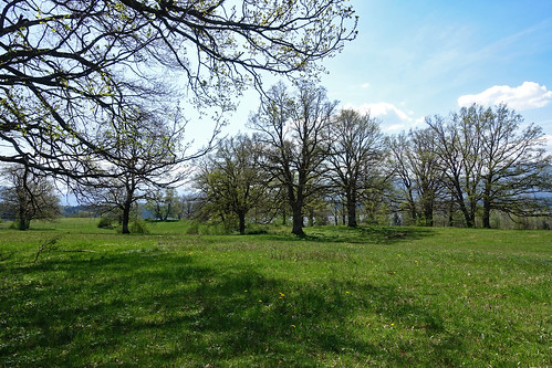 2018-04-21 Uffing, Staffelsee 018