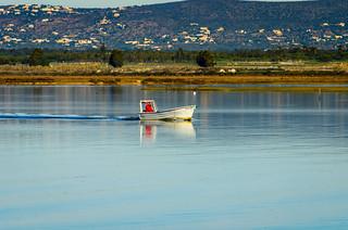 Fishing 1505