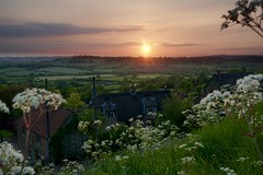 our day approaches (mark1830) Tags: fields cottage anniversary flowers cowparsley village evening thatch
